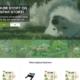Online dyrehandel
