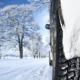Vinterdæk hvornår